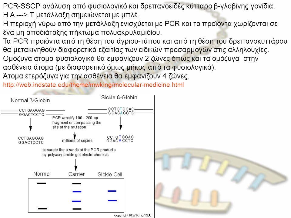Η A ---> T μετάλλαξη σημειώνεται με μπλέ.
