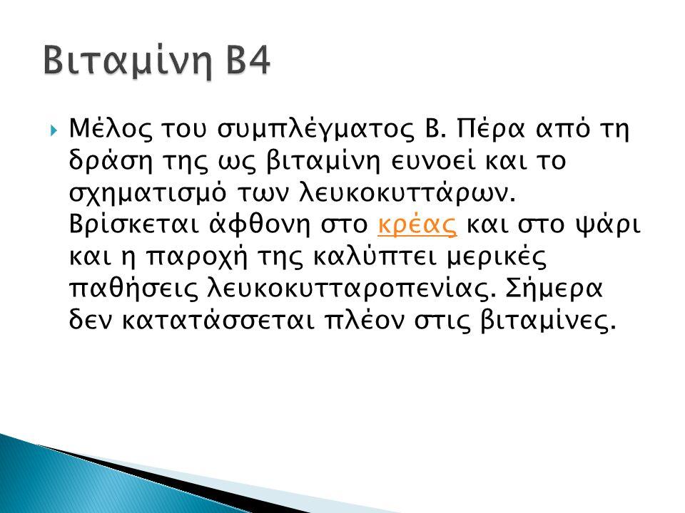 Βιταμίνη Β4
