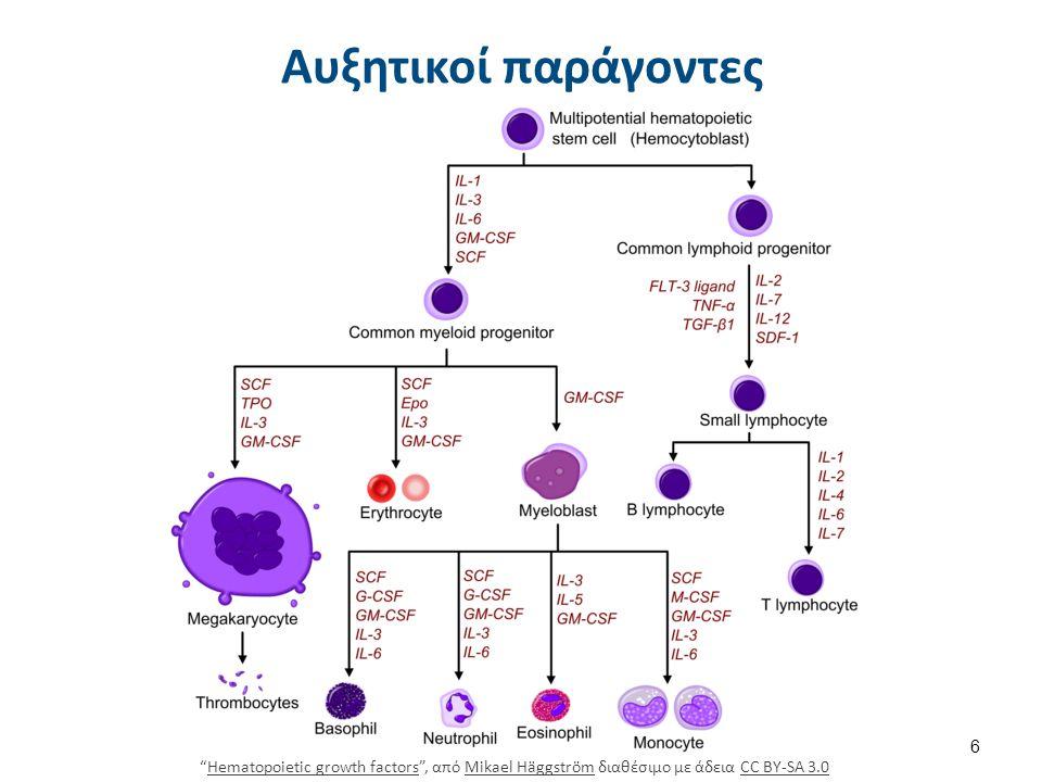 Δημιουργία αιμοπεταλίων