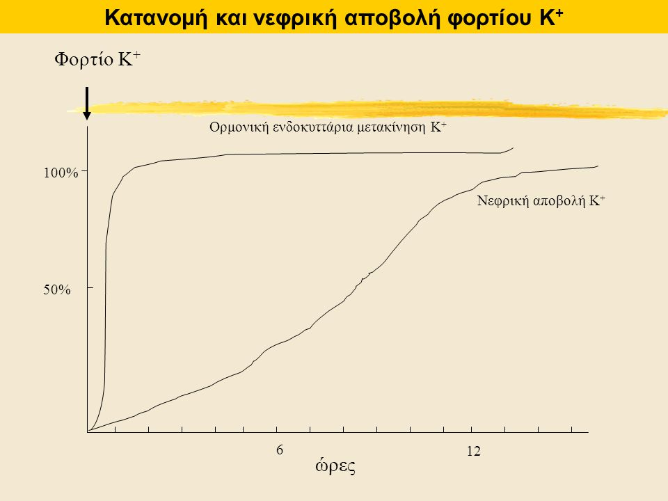 Κατανομή και νεφρική αποβολή φορτίου Κ+