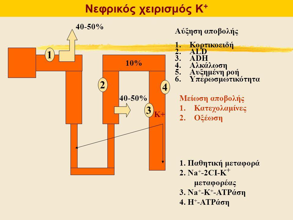 Νεφρικός χειρισμός Κ+ 1 2 4 3 40-50% Αύξηση αποβολής Κορτικοειδή ALD