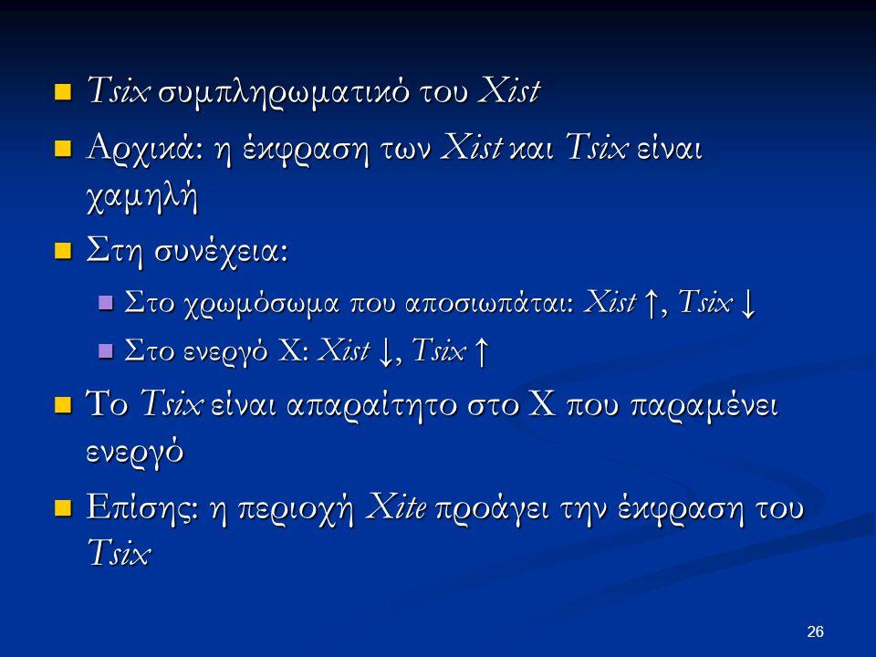 Tsix συμπληρωματικό του Xist