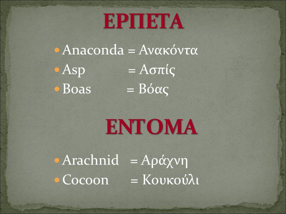 ΕΡΠΕΤΑ ΕΝΤΟΜΑ Anaconda = Ανακόντα Asp = Ασπίς Boas = Βόας