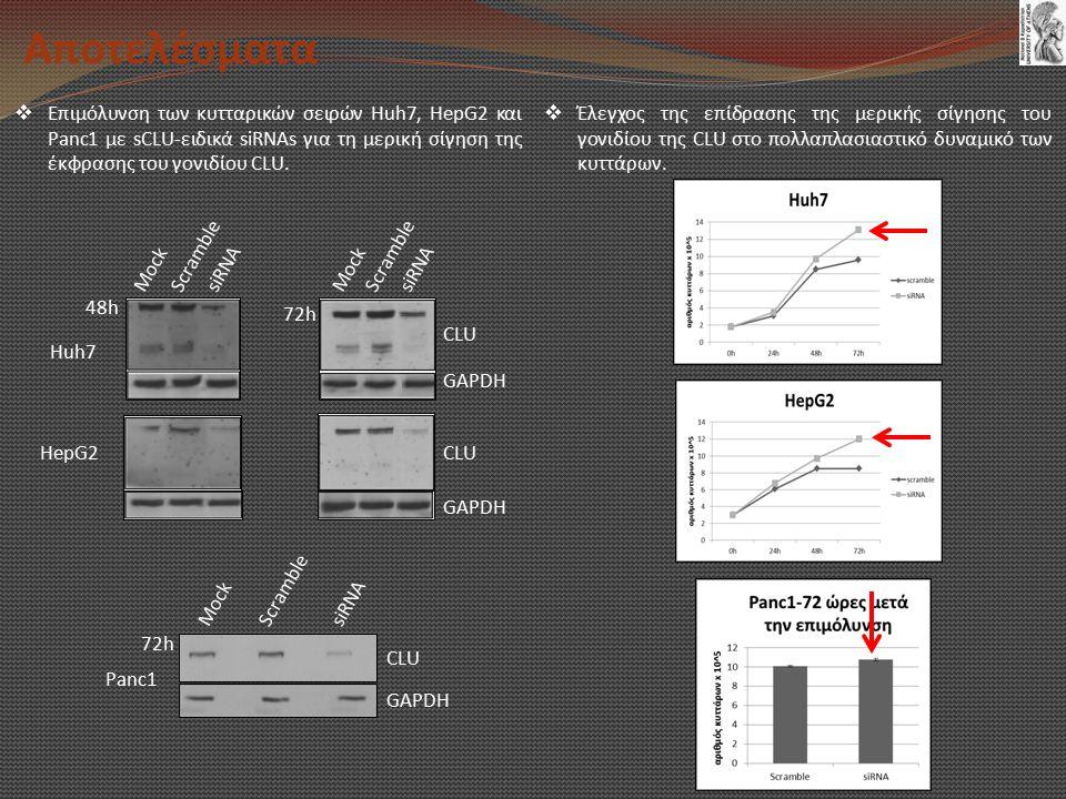 Αποτελέσματα Επιμόλυνση των κυτταρικών σειρών Huh7, HepG2 και Panc1 με sCLU-ειδικά siRNAs για τη μερική σίγηση της έκφρασης του γονιδίου CLU.