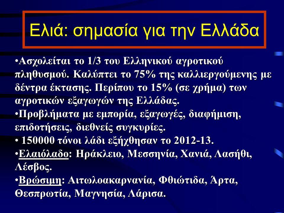Ελιά: σημασία για την Ελλάδα