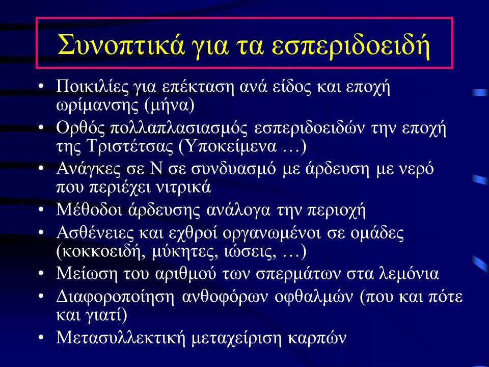 Συνοπτικά για τα εσπεριδοειδή