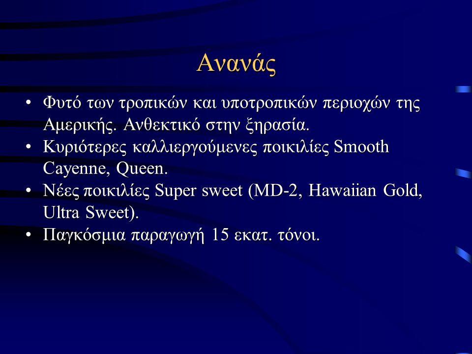 Ανανάς Φυτό των τροπικών και υποτροπικών περιοχών της Αμερικής. Ανθεκτικό στην ξηρασία. Κυριότερες καλλιεργούμενες ποικιλίες Smooth Cayenne, Queen.