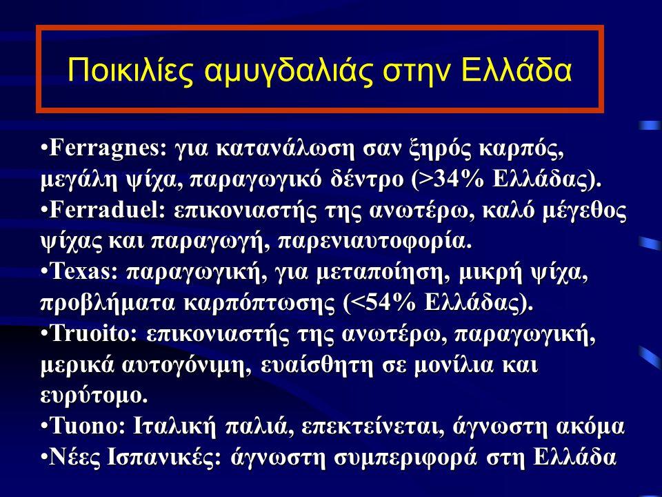 Ποικιλίες αμυγδαλιάς στην Ελλάδα