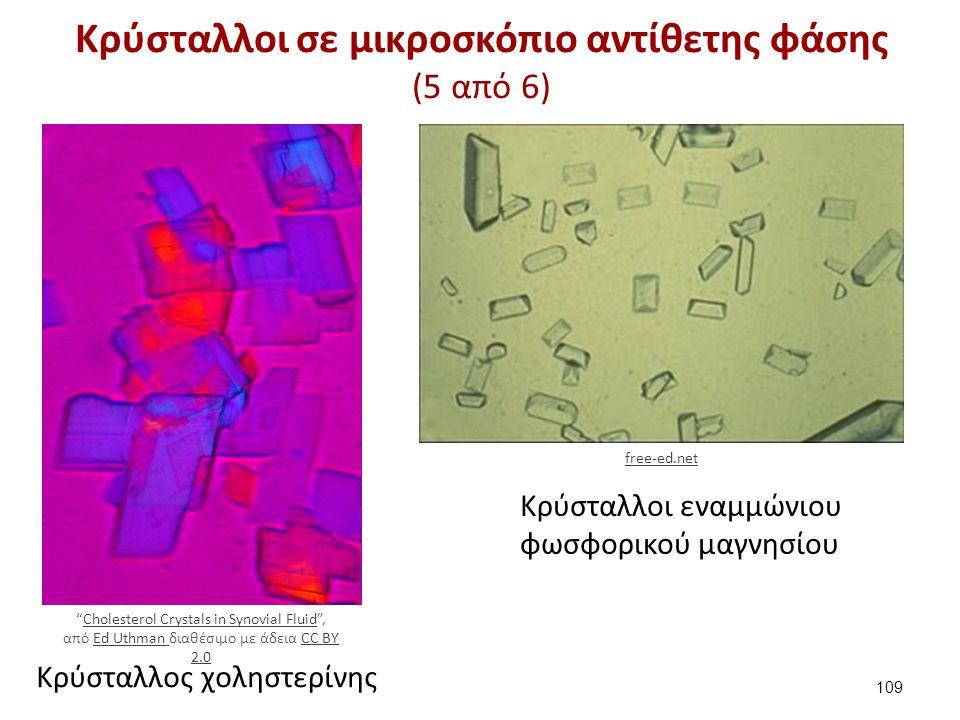 Κρύσταλλοι σε μικροσκόπιο αντίθετης φάσης (6 από 6)