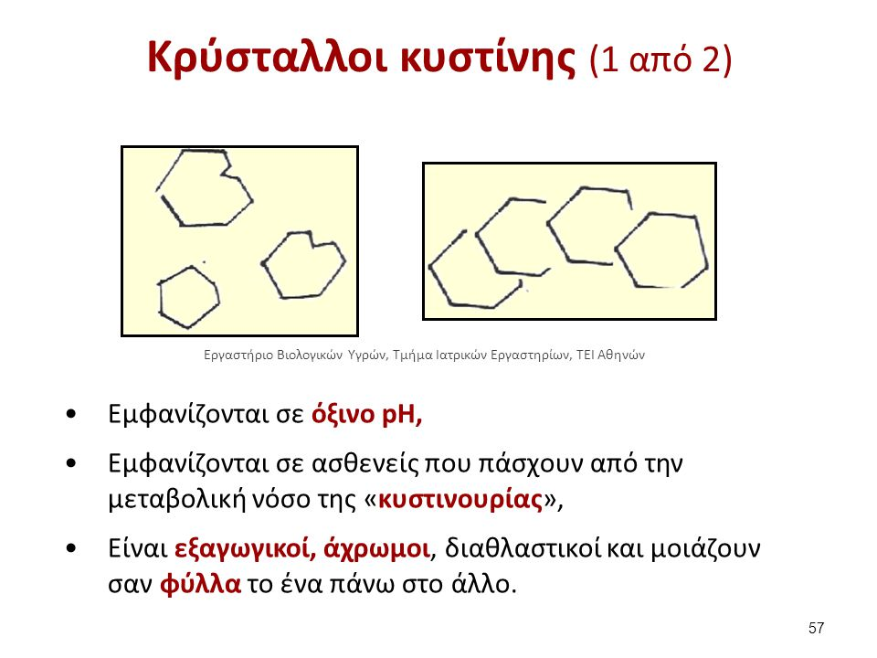 Κρύσταλλοι κυστίνης (2 από 2)
