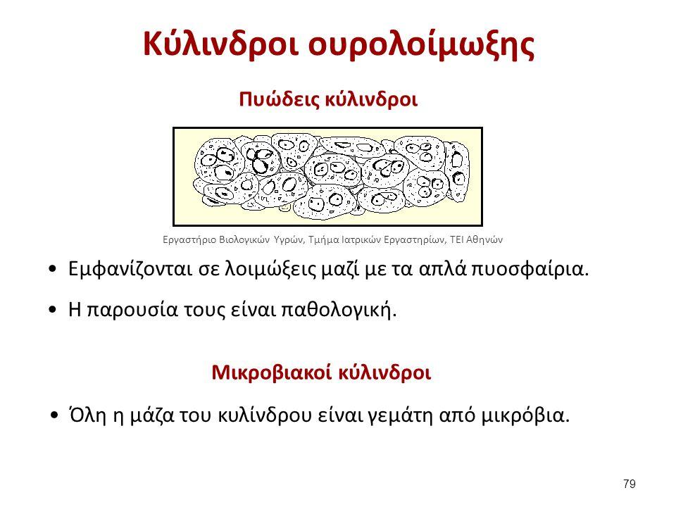 Μικροβιακοί κύλινδροι