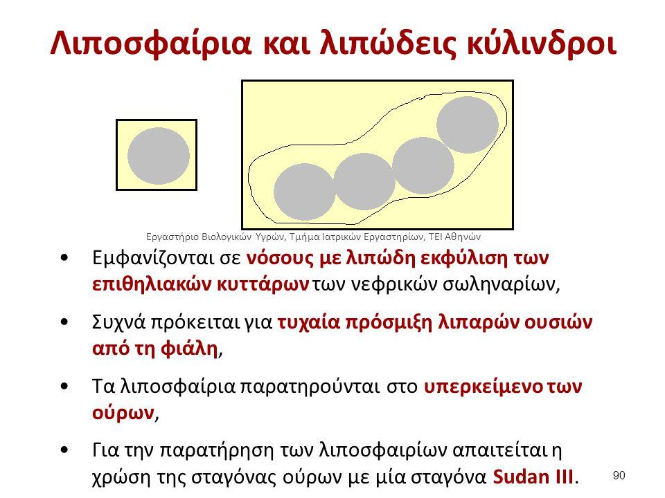 Λιποσφαίρια panji1102.blogspot.gr