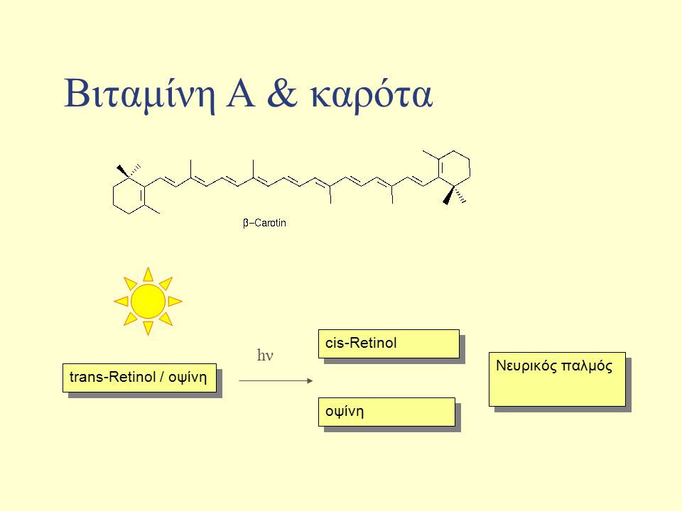 Bιταμίνη Α & καρότα hν cis-Retinol Νευρικός παλμός