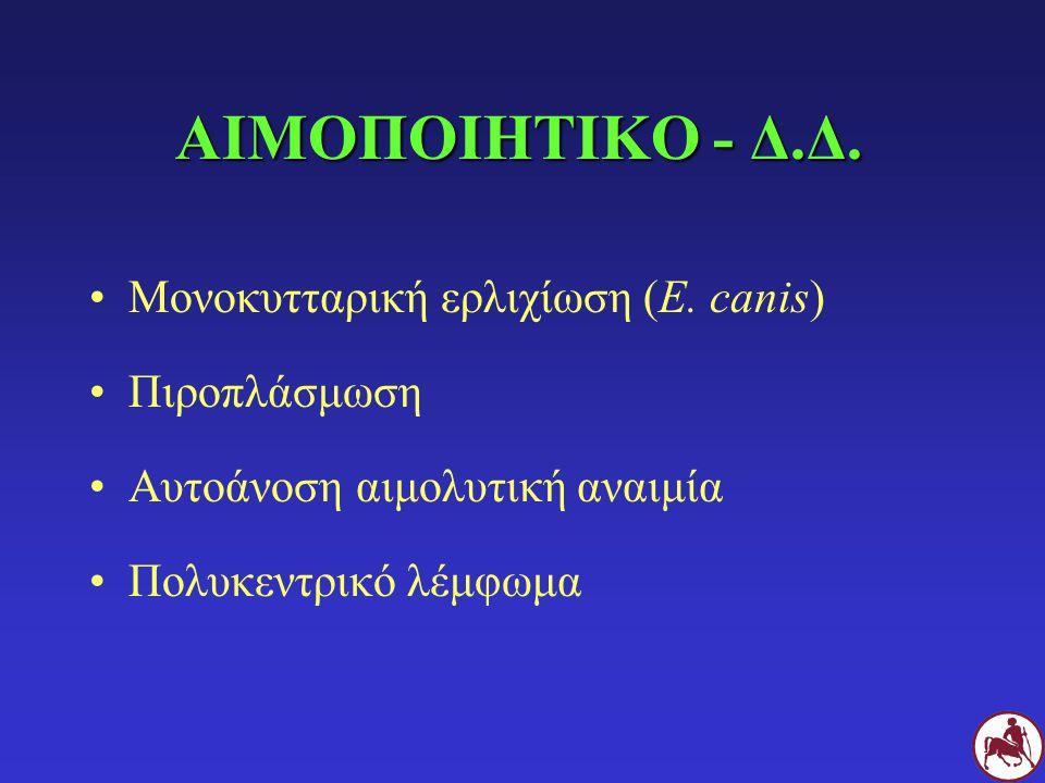 ΑΙΜΟΠΟΙΗΤΙΚΟ - Δ.Δ. Μονοκυτταρική ερλιχίωση (E. canis) Πιροπλάσμωση