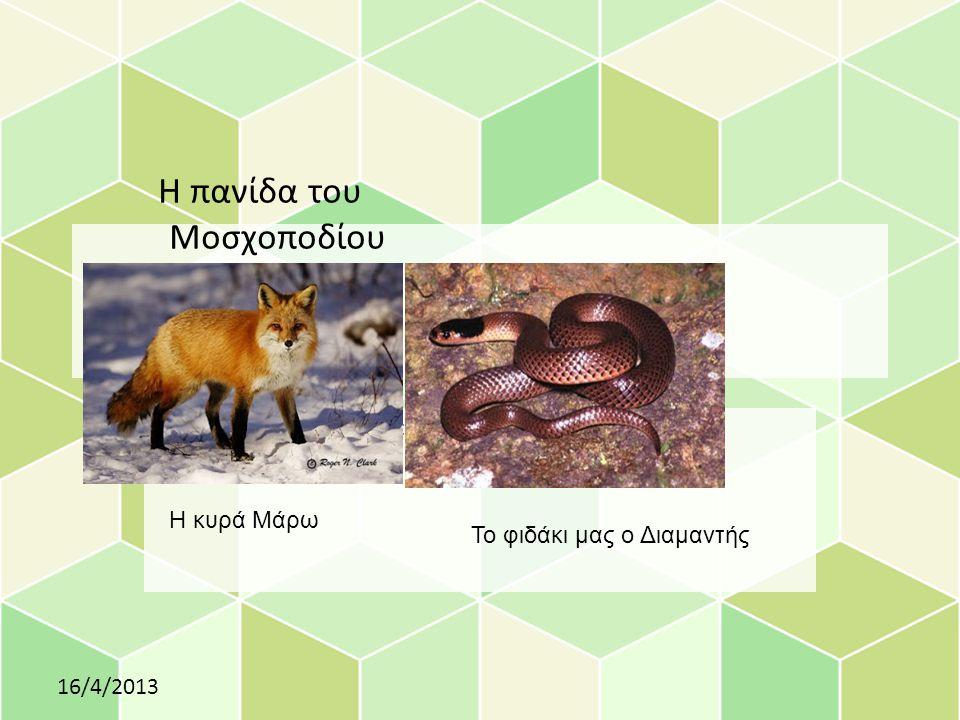 Η πανίδα του Μοσχοποδίου