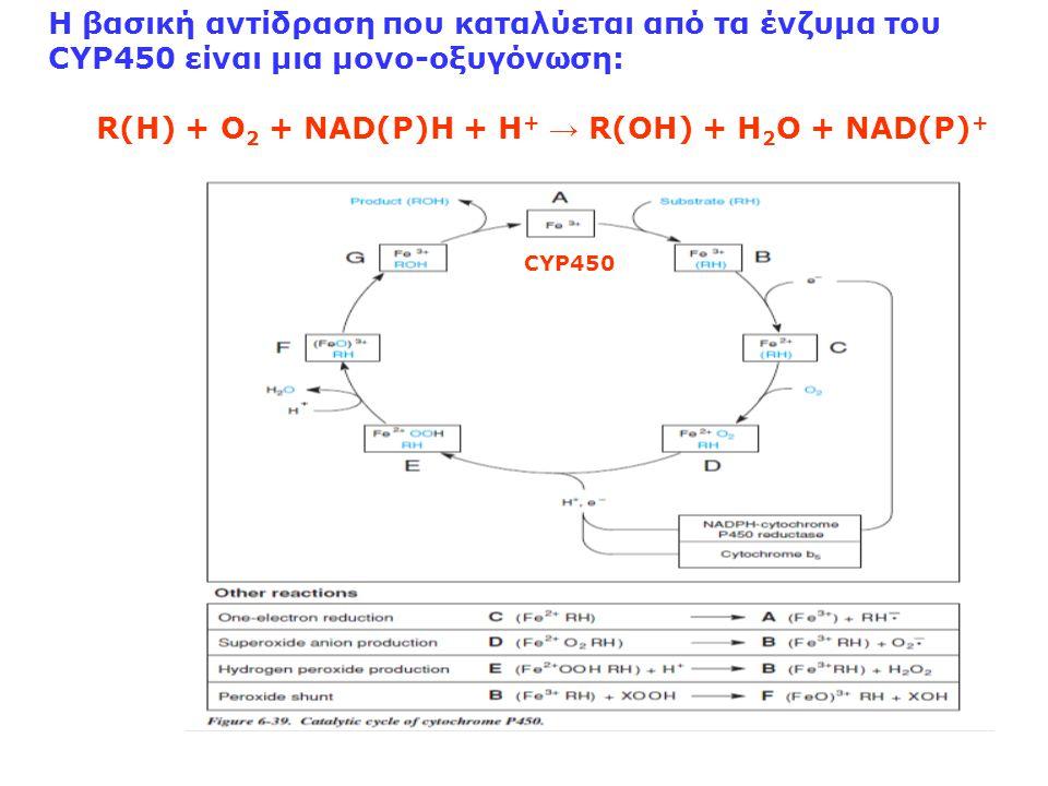 R(H) + O2 + NAD(P)H + H+ → R(OH) + H2O + NAD(P)+
