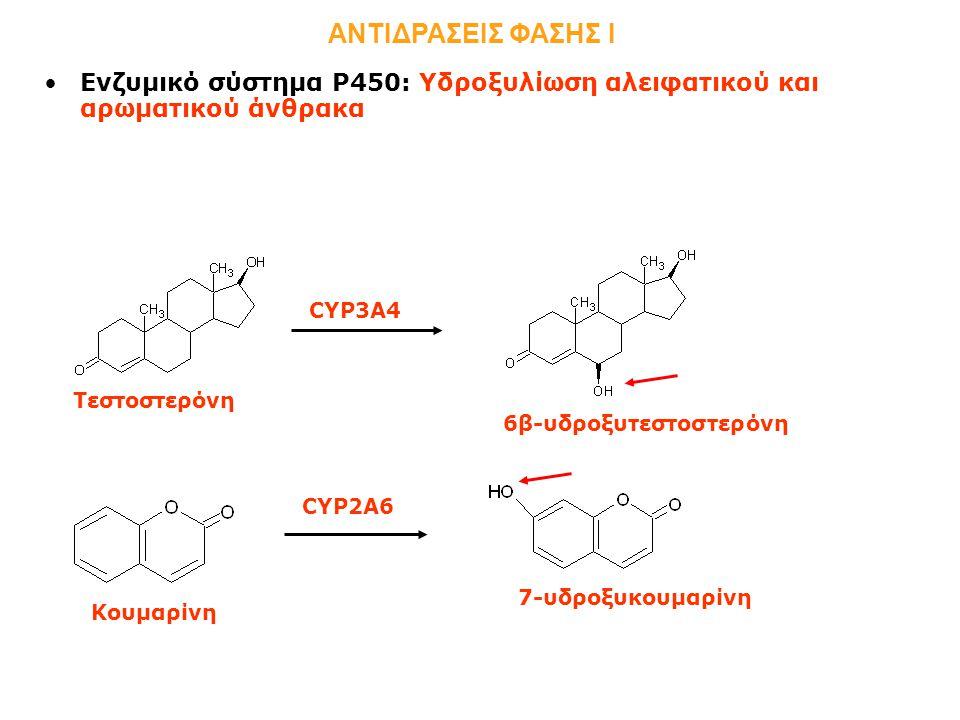 6β-υδροξυτεστοστερόνη