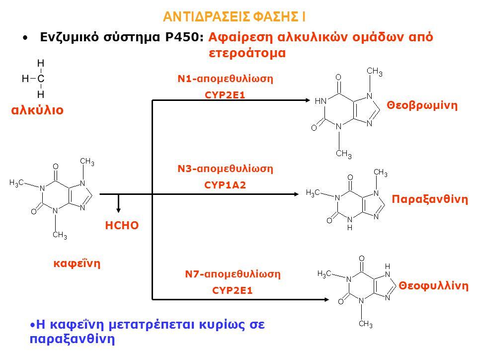 ΑΝΤΙΔΡΑΣΕΙΣ ΦΑΣΗΣ Ι Ενζυμικό σύστημα Ρ450: Αφαίρεση αλκυλικών ομάδων από. ετεροάτομα. Ν1-απομεθυλίωση.