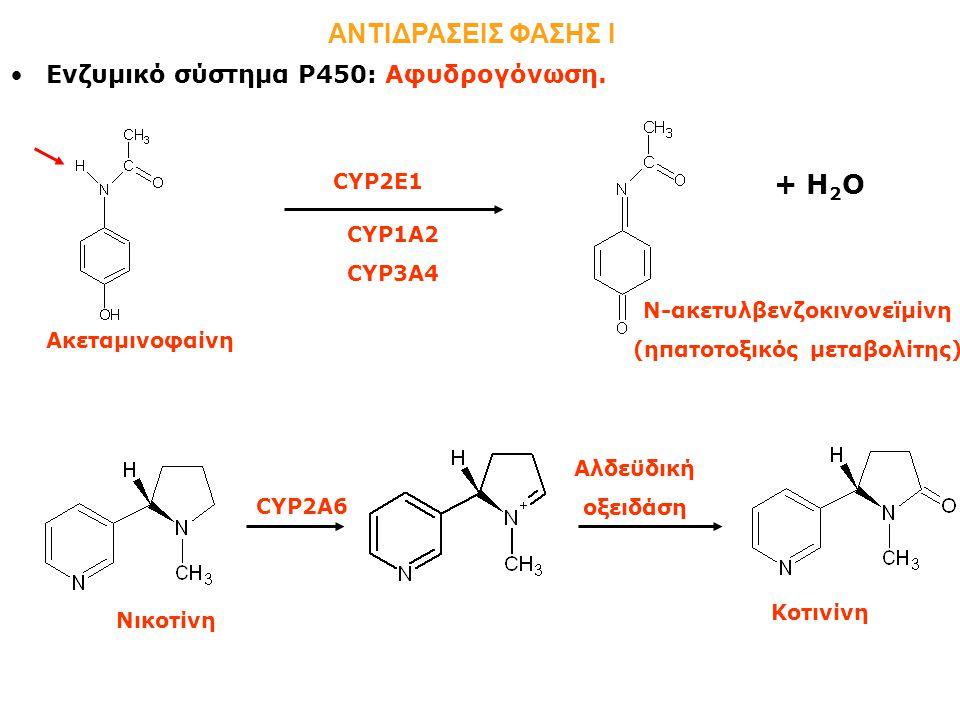 N-ακετυλβενζοκινονεϊμίνη (ηπατοτοξικός μεταβολίτης)
