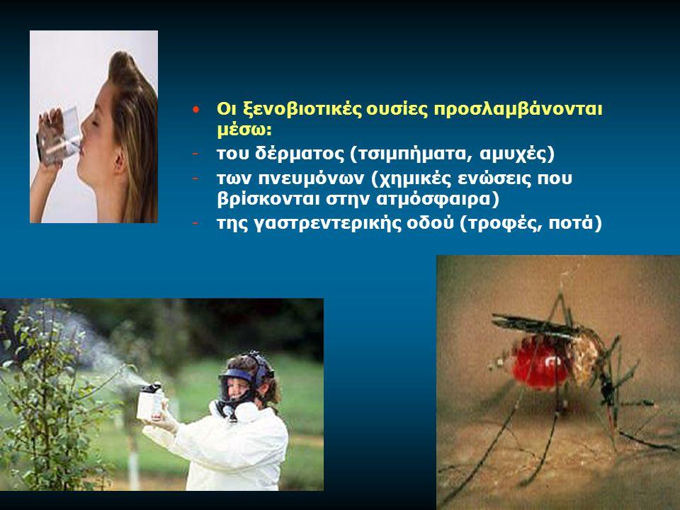 Οι ξενοβιοτικές ουσίες προσλαμβάνονται μέσω: