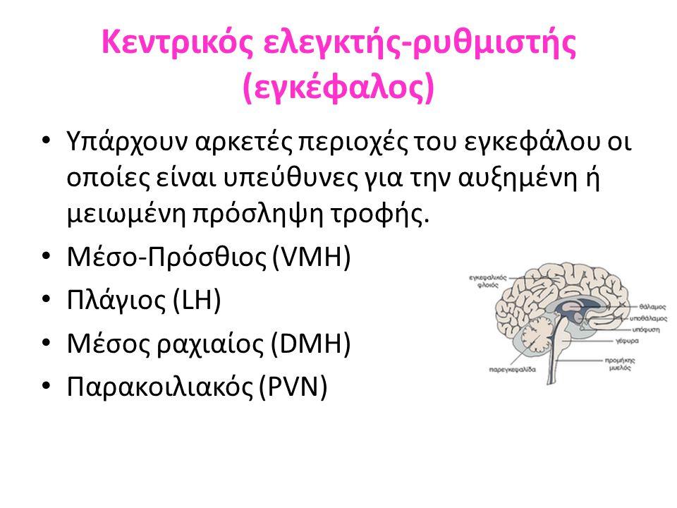 Κεντρικός ελεγκτής-ρυθμιστής (εγκέφαλος)