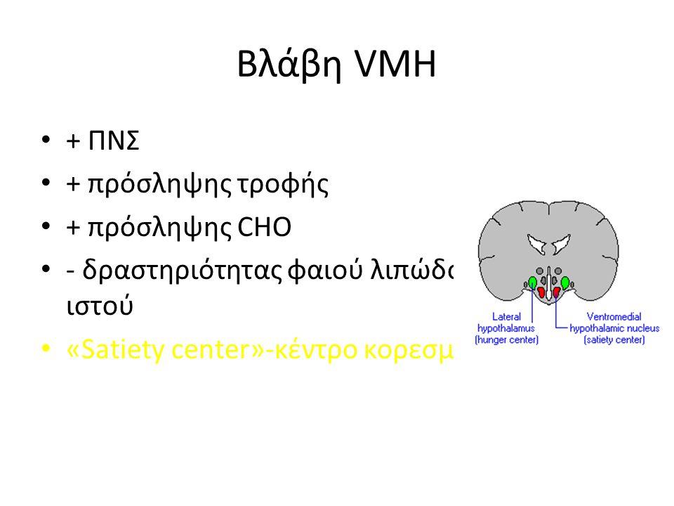 Βλάβη VMH + ΠΝΣ + πρόσληψης τροφής + πρόσληψης CHO