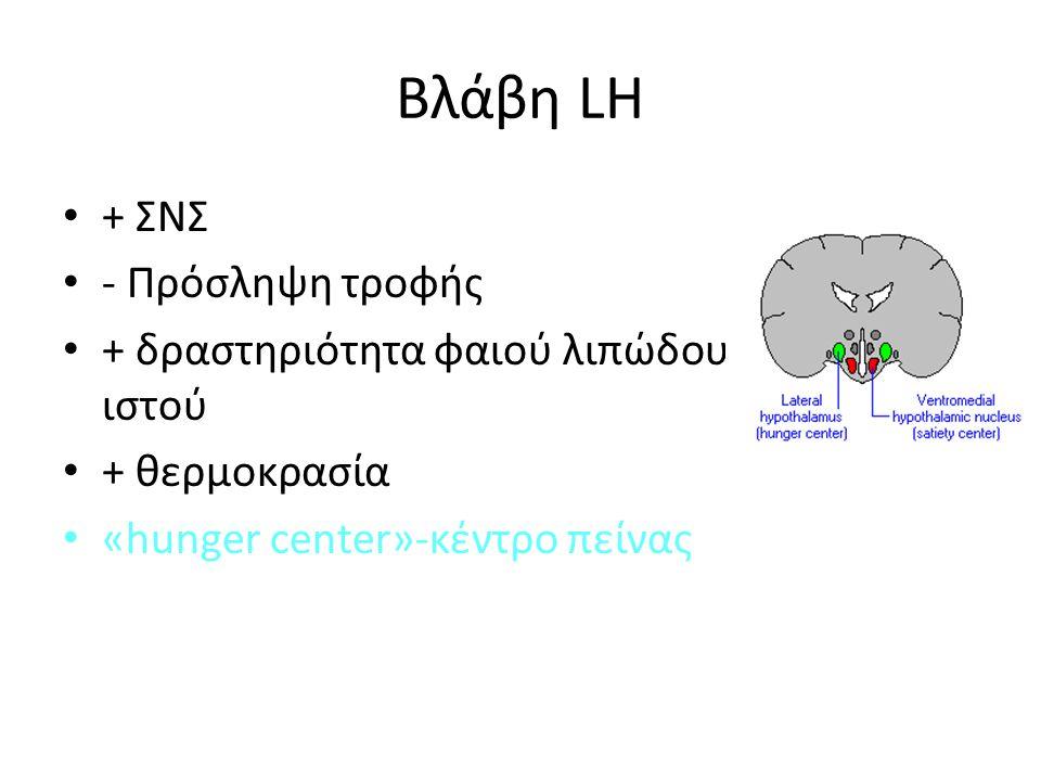 Βλάβη LH + ΣΝΣ - Πρόσληψη τροφής + δραστηριότητα φαιού λιπώδους ιστού