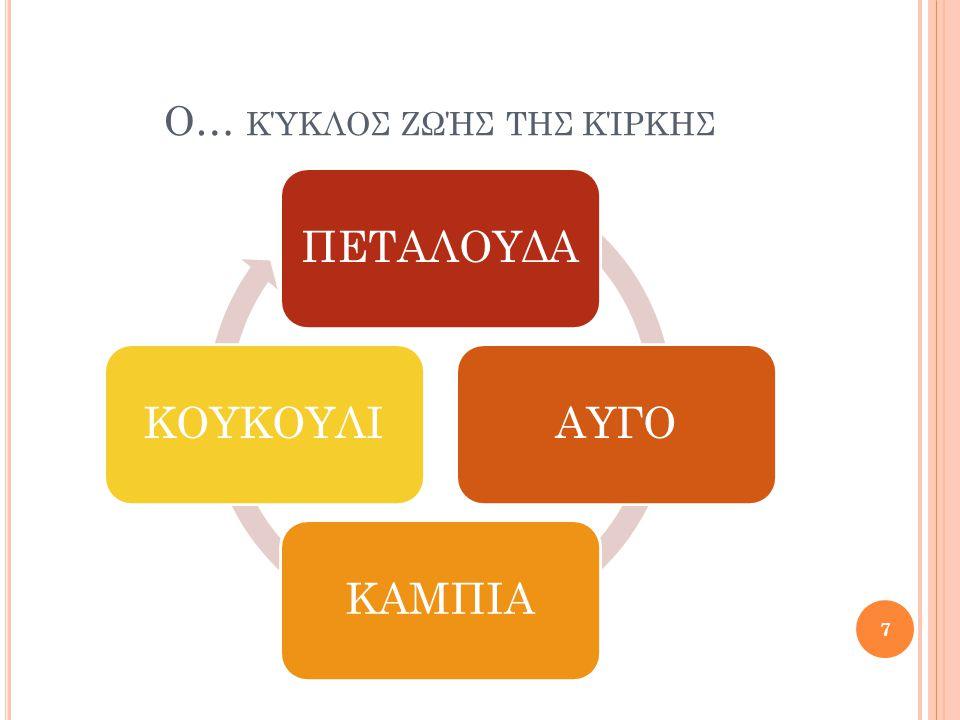 Ο… κύκλοσ ζωήσ τηΣ ΚΊΡΚΗΣ