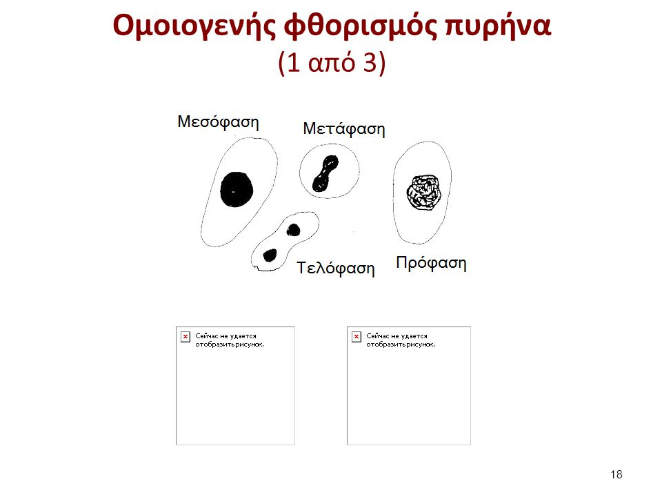 Ομοιογενής φθορισμός πυρήνα (2 από 3)