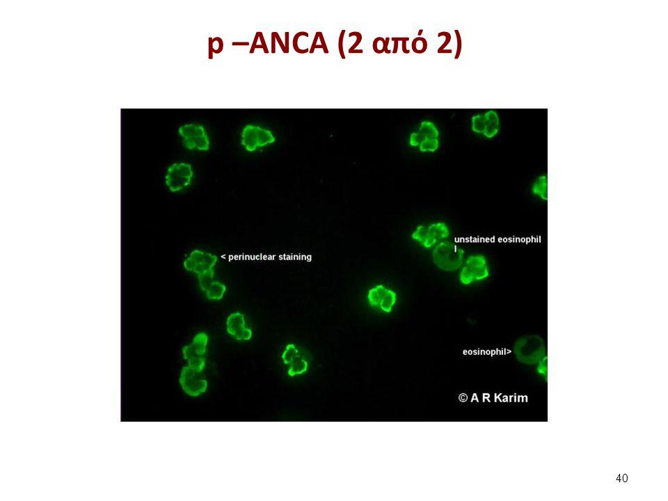 Aντισώματα έναντι των λείων μυϊκών κυττάρων (SMA)