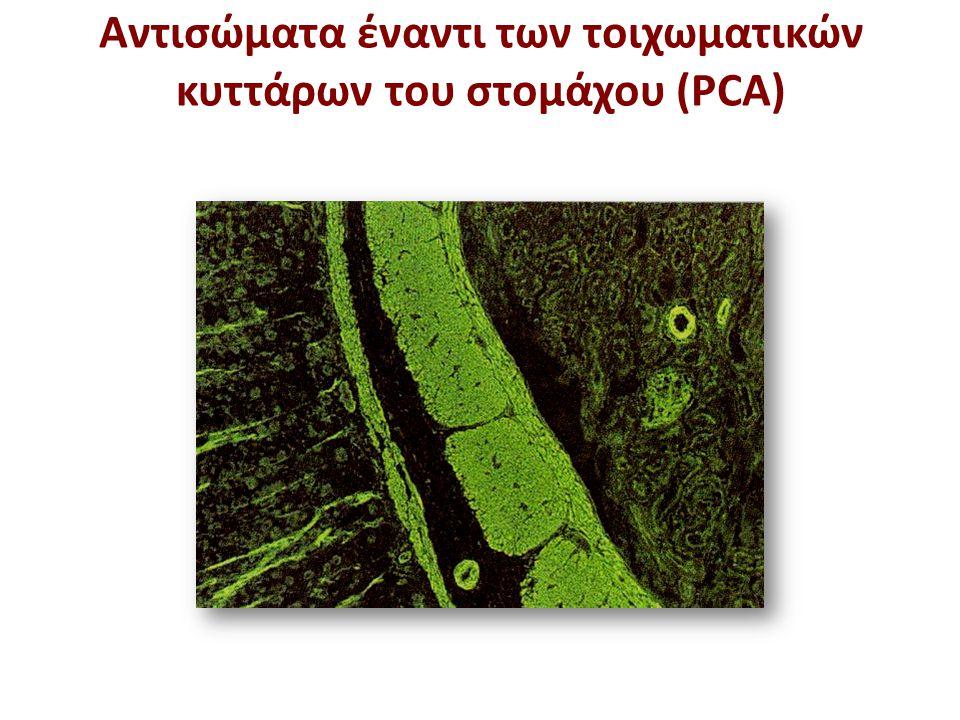 Αντιμιτοχονδριακά αντισώματα (ΑΜΑ)