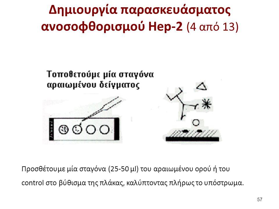Δημιουργία παρασκευάσματος ανοσοφθορισμού Hep-2 (5 από 13)