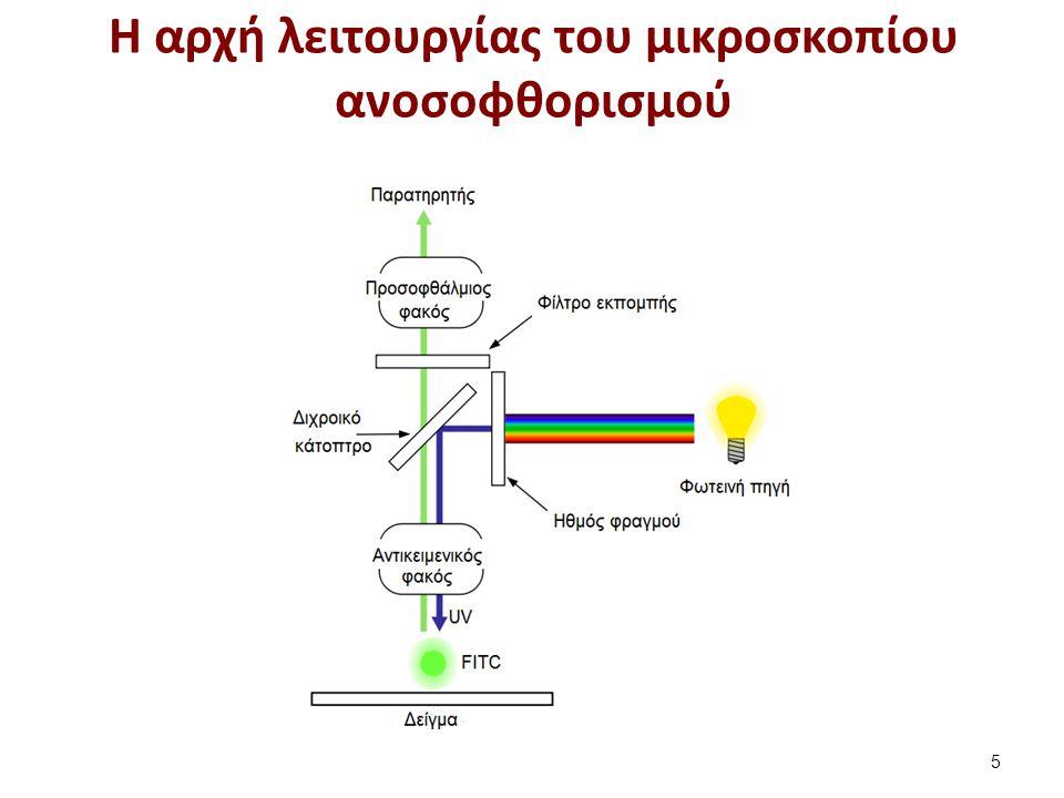 Η δομή ενός μικροσκοπίου φθορισμού