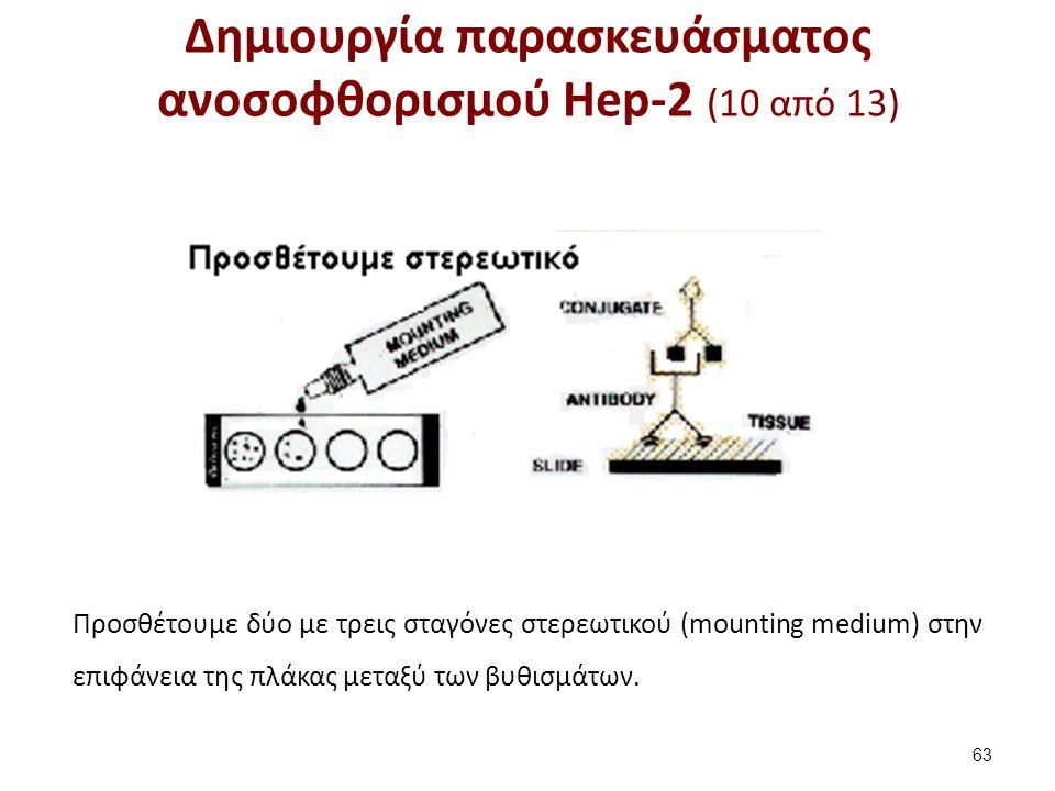 Δημιουργία παρασκευάσματος ανοσοφθορισμού Hep-2 (11 από 13)