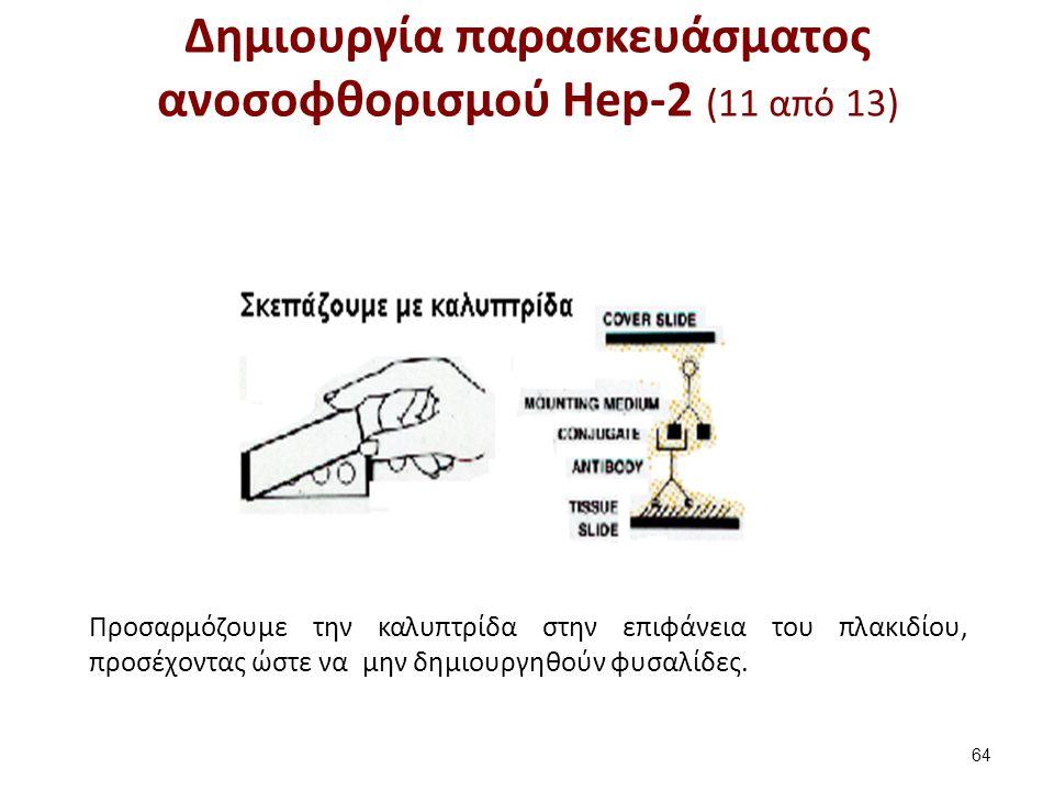 Δημιουργία παρασκευάσματος ανοσοφθορισμού Hep-2 (12 από 13)