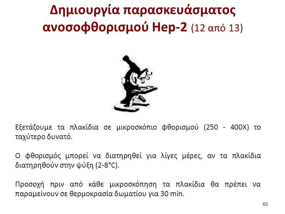 Δημιουργία παρασκευάσματος ανοσοφθορισμού Hep-2 (13 από 13)