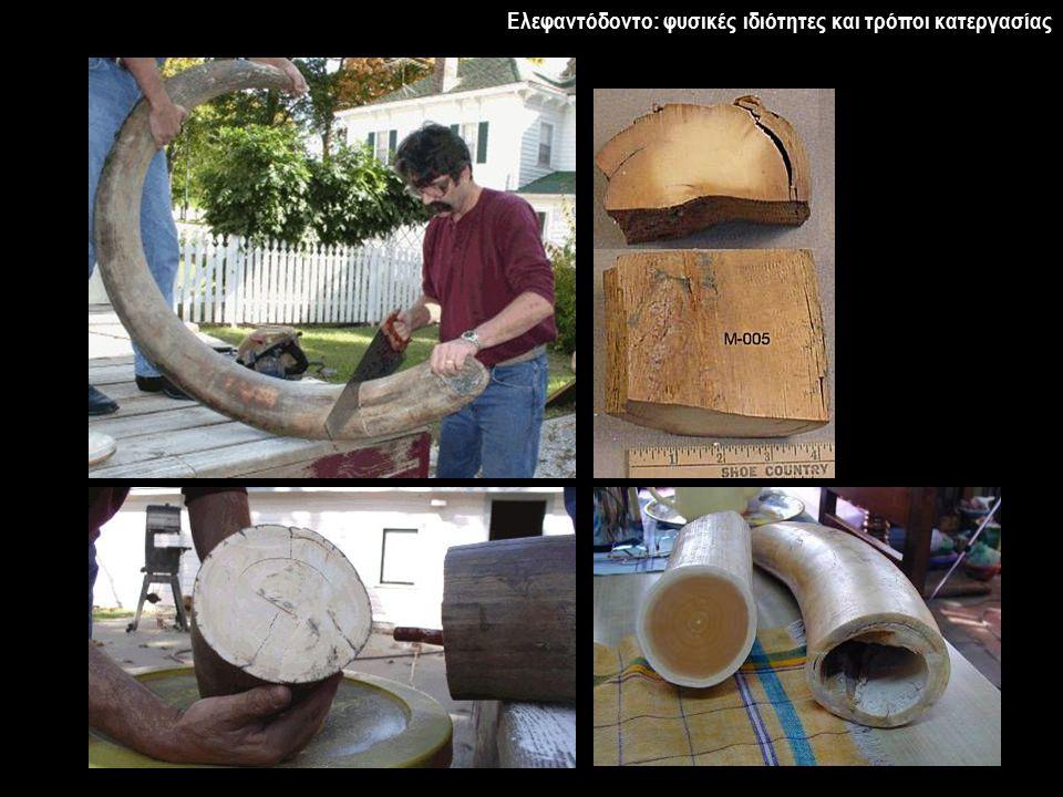 Ελεφαντόδοντο: φυσικές ιδιότητες και τρόποι κατεργασίας