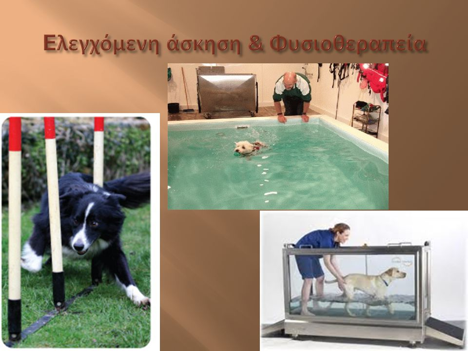 Eλεγχόμενη άσκηση & Φυσιοθεραπεία