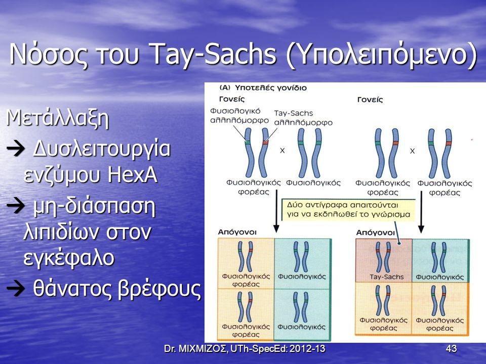 Νόσος του Tay-Sachs (Υπολειπόμενο)