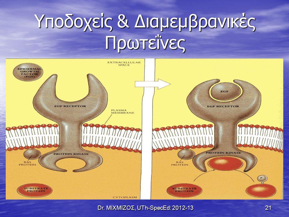 Υποδοχείς & Διαμεμβρανικές Πρωτεΐνες