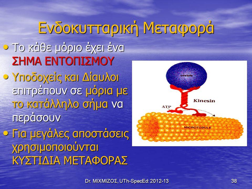 Ενδοκυτταρική Μεταφορά