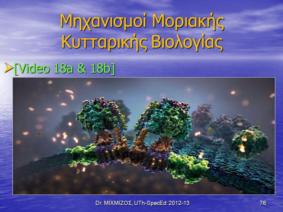 Μηχανισμοί Μοριακής Κυτταρικής Βιολογίας