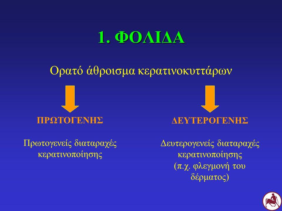 1. ΦΟΛΙΔΑ Ορατό άθροισμα κερατινοκυττάρων ΠΡΩΤΟΓΕΝΗΣ