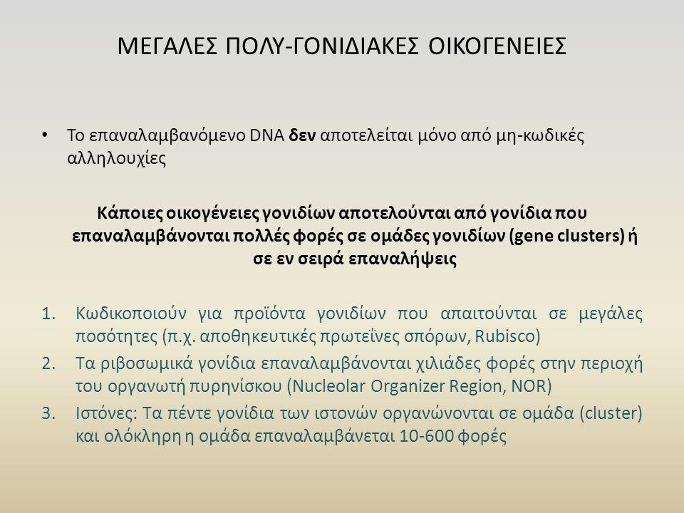 ΜΕΓΑΛΕΣ ΠΟΛΥ-ΓΟΝΙΔΙΑΚΕΣ ΟΙΚΟΓΕΝΕΙΕΣ