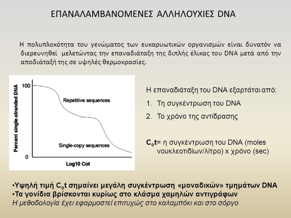 ΕΠΑΝΑΛΑΜΒΑΝΟΜΕΝΕΣ ΑΛΛΗΛΟΥΧΙΕΣ DNA