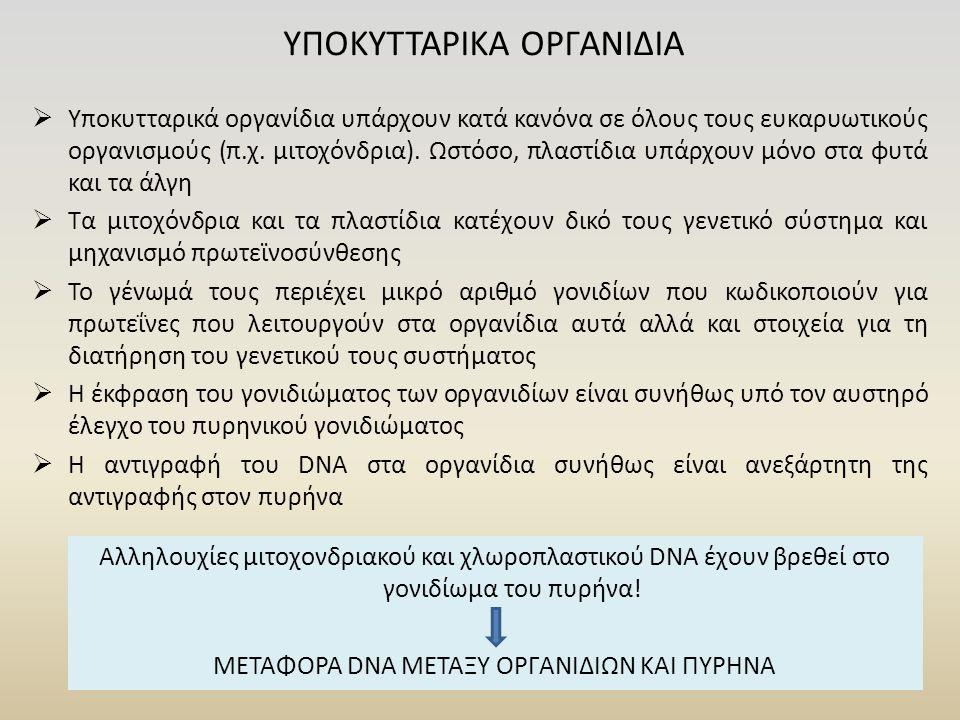 ΥΠΟΚΥΤΤΑΡΙΚΑ ΟΡΓΑΝΙΔΙΑ