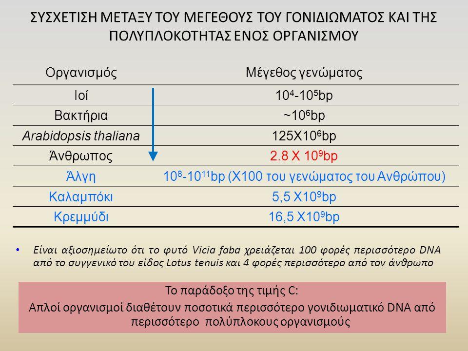 108-1011bp (Χ100 του γενώματος του Ανθρώπου)