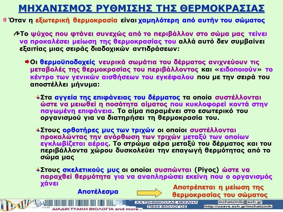 ΜΗΧΑΝΙΣΜΟΣ ΡΥΘΜΙΣΗΣ ΤΗΣ ΘΕΡΜΟΚΡΑΣΙΑΣ