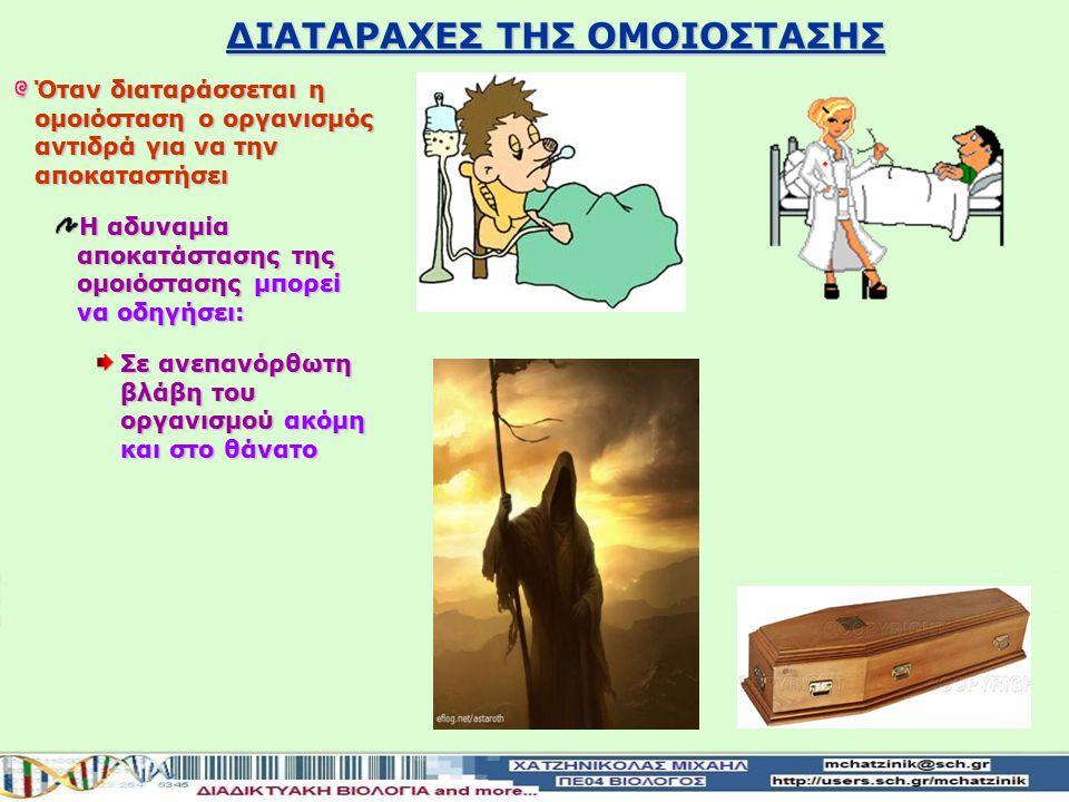ΔΙΑΤΑΡΑΧΕΣ ΤΗΣ ΟΜΟΙΟΣΤΑΣΗΣ