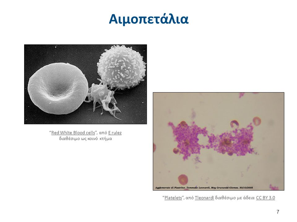 Illu blood cell lineage , από Arcadian διαθέσιμο ως κοινό κτήμα